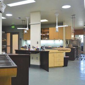 Companion Animal Hospital - San Diego Animal Hospital | Helen
