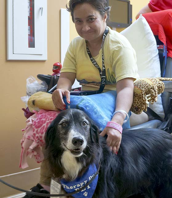 Pet Encounter Therapy