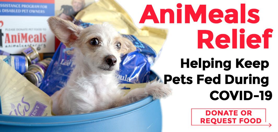 AniMeals Relief Slider 1