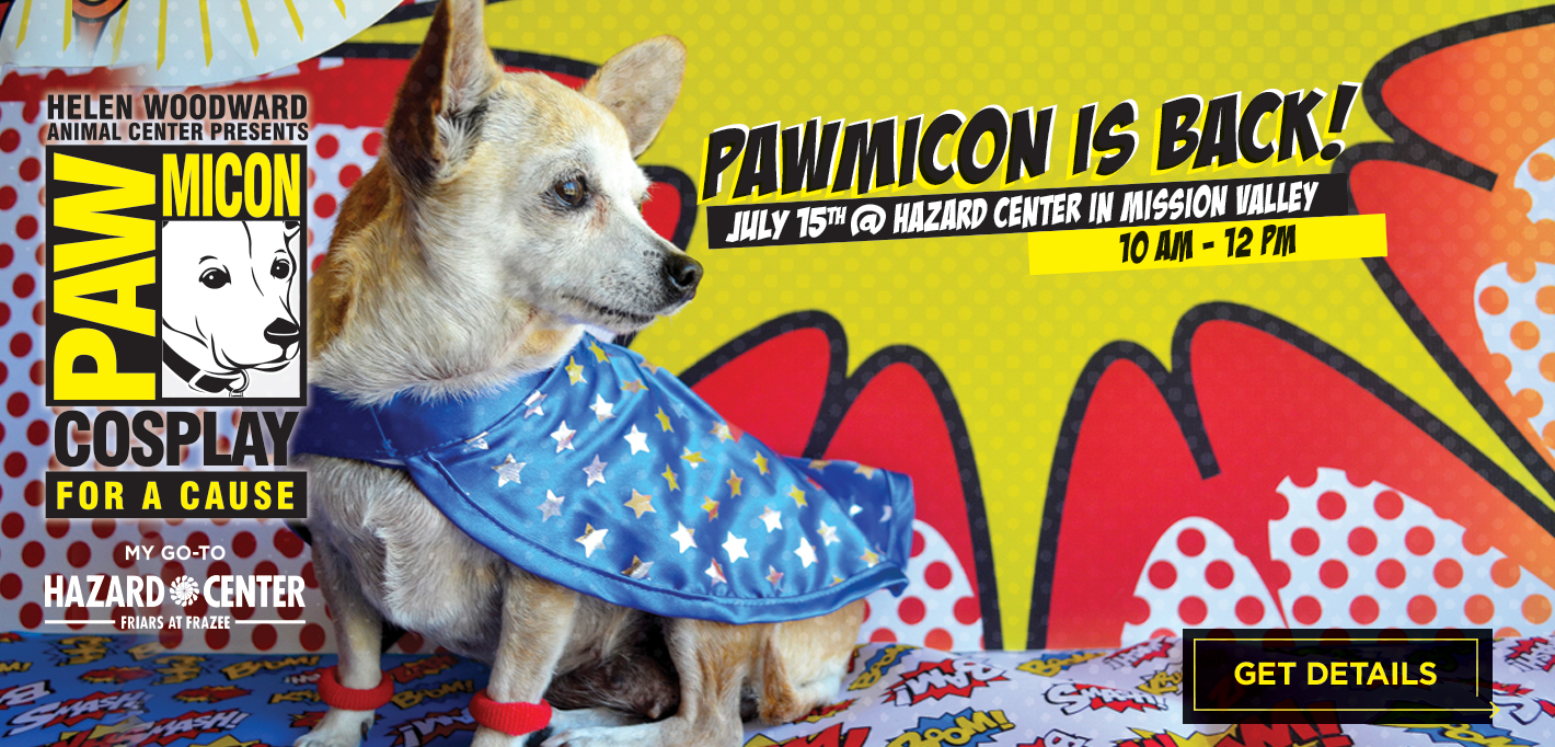 Pawmicon_SLIDER18