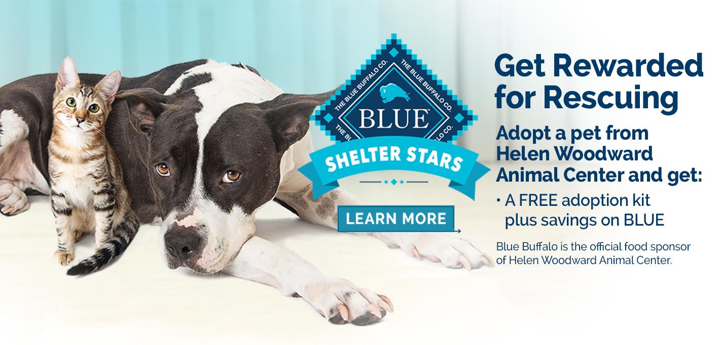 Slider - 2021-Adoption Program Partner Advertisements_V2 HWAC_r2Banner Website 1420x682