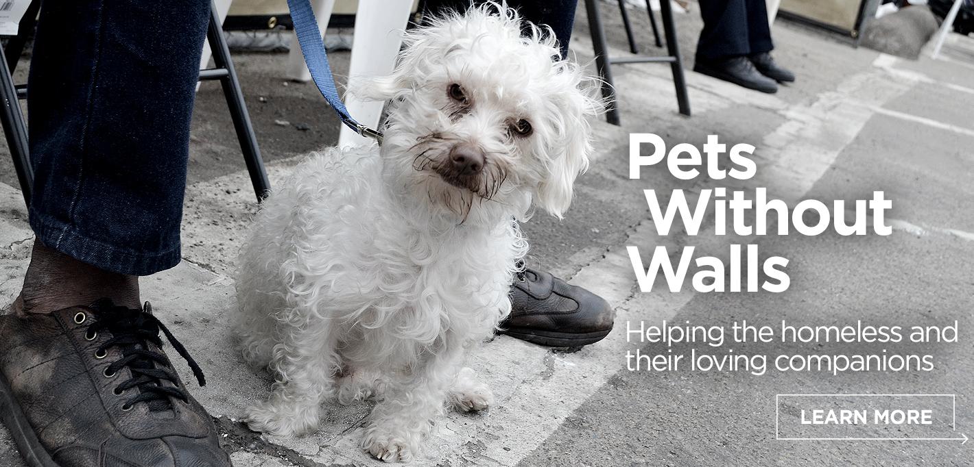 Slider17_PetsWithoutWalls