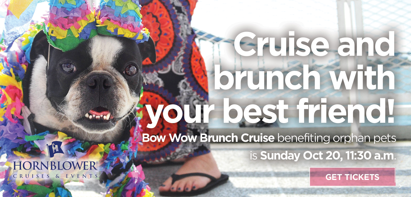 Slider19_BowWowBrunch