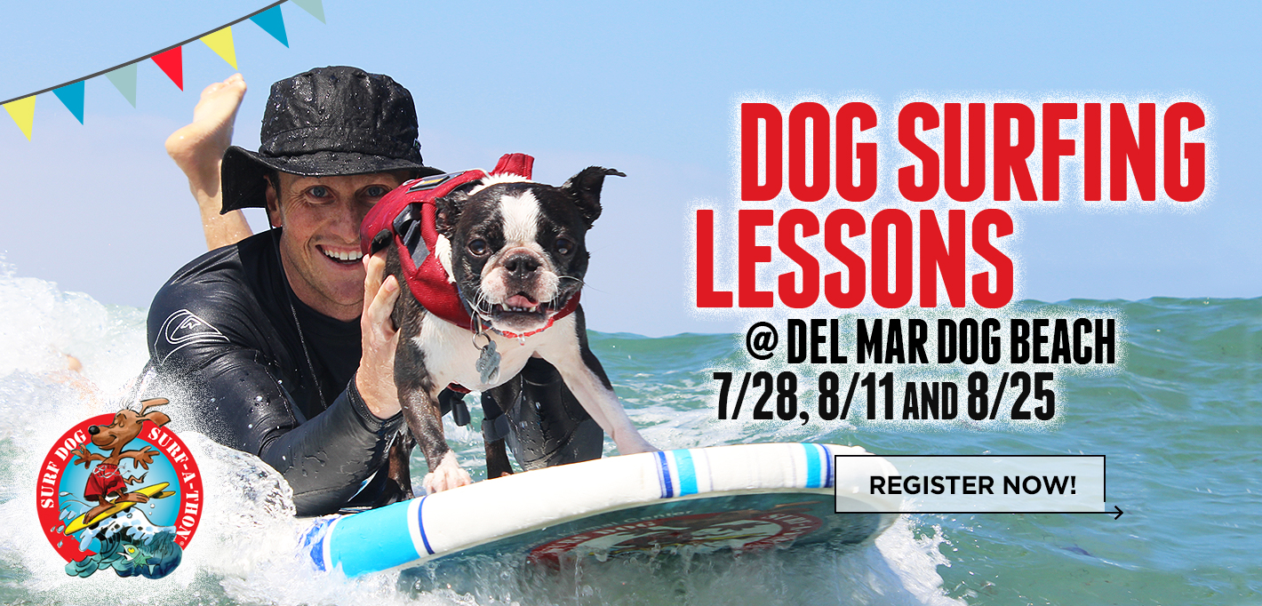 Slider19_DogSurfingLessons-2