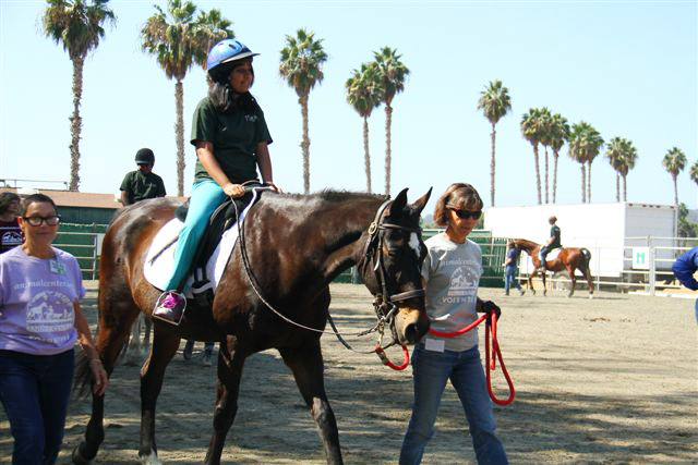 Equine Therapy Program | Horse Hippotherapy | Helen Woodward Animal ...