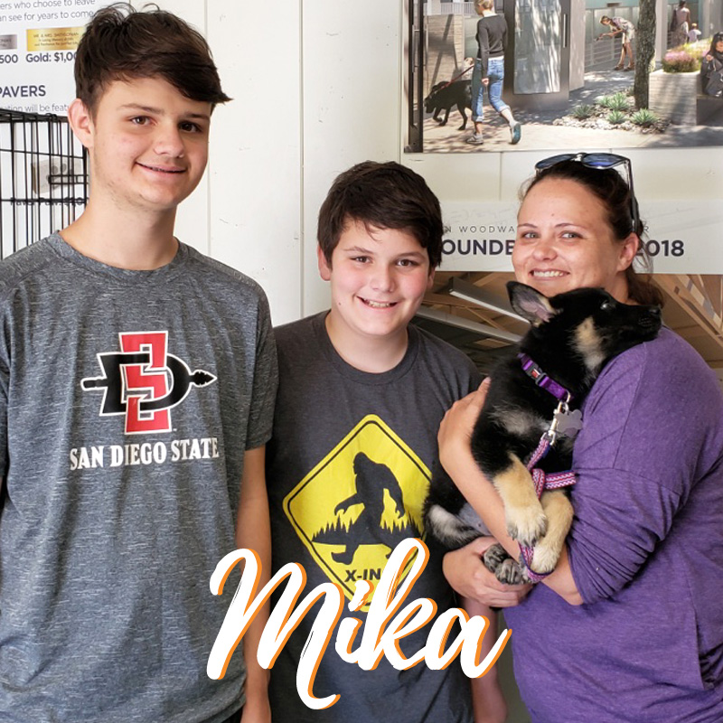 Mika Adoption - web
