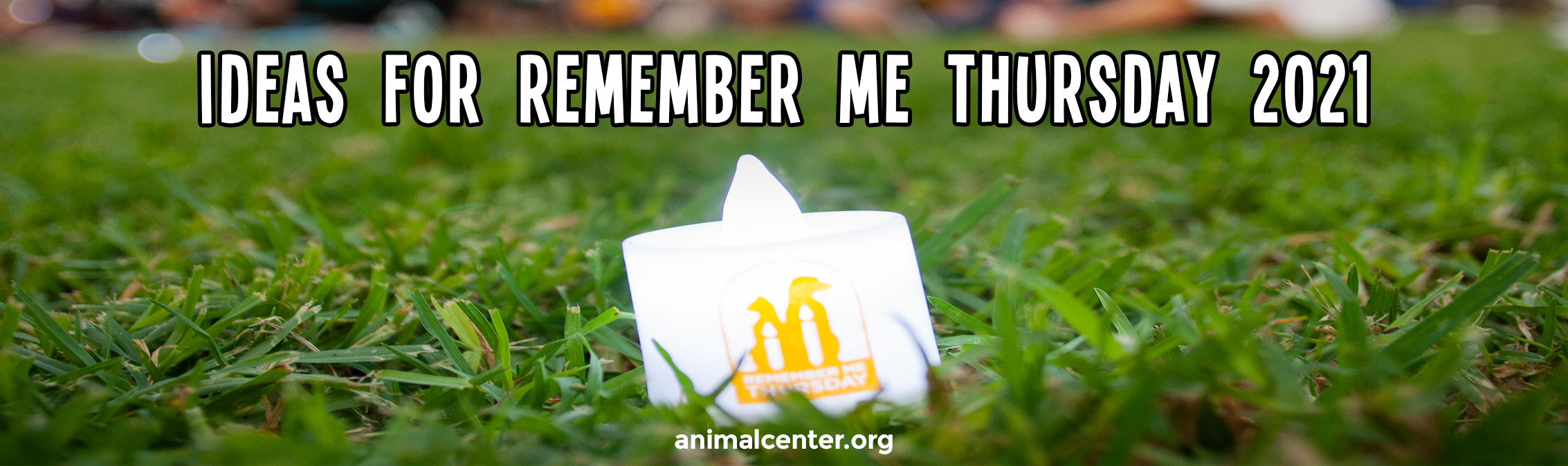Ideas on how to Participate in #RememberMeThursday for 2021