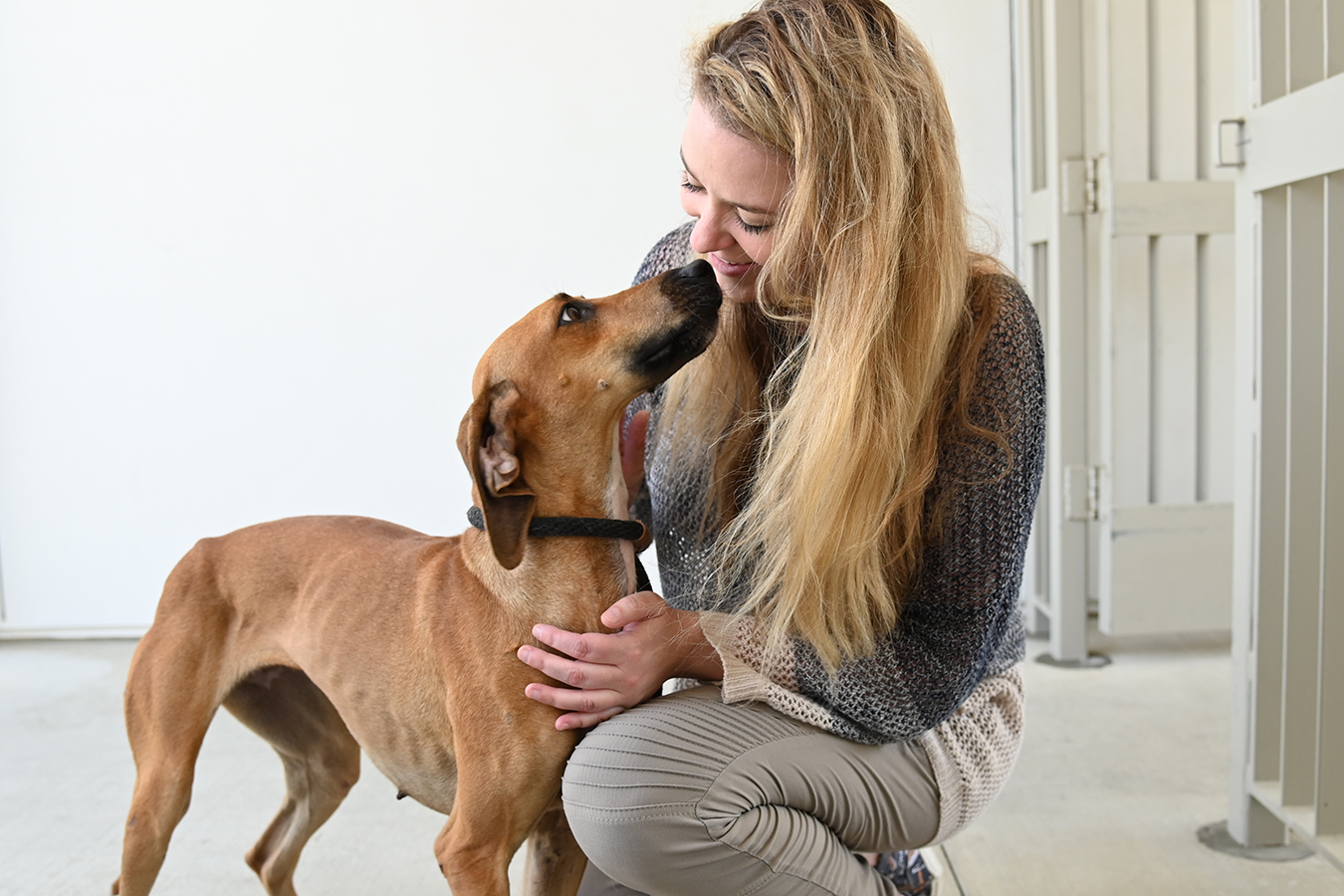Orphan dog shows her appreciation shortly after arrival